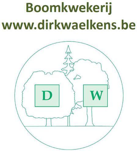 Waelkens Dirk